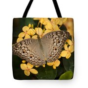 Grey Pansy Butterfly Arizona Tote Bag