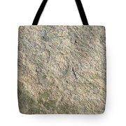 Grey Rock Texture Tote Bag