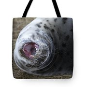 Grey Seal Pup Yawning Tote Bag