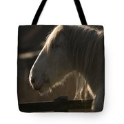 Grey Shire Horse Tote Bag