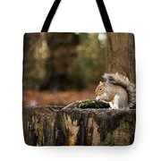 Grey Squirrel On A Stump Tote Bag