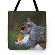 Grey Squirrel Tucking In Tote Bag