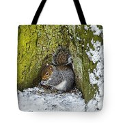 Grey Squirrel With Its Food Store Tote Bag