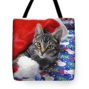 Grey Tabby Cat With Santa Claus Hat Tote Bag