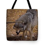 Grey Wolf   #2637-signed Tote Bag