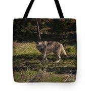 Grey Wolf   #3315 Tote Bag