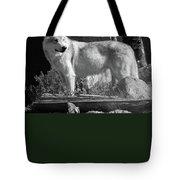 North American Wolf  Tote Bag