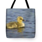 Greylag Goose Gosling Zeeland Tote Bag