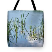 Greylake Reflections Tote Bag