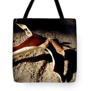 Griffith Park Fall Leaf Tote Bag
