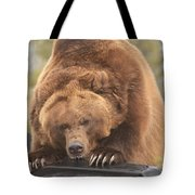 Grizly Lunch Tote Bag