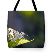 Grizzled Skipper Two Tote Bag