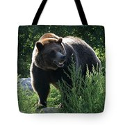 Grizzly-7759 Tote Bag