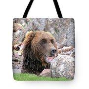 Grizzly Bear 02 Postcard Tote Bag