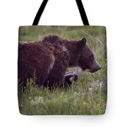 Grizzly Bear  #6192 Tote Bag