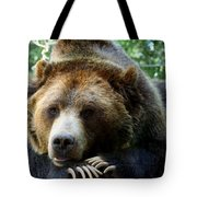 Grizzly Bear At Rest In Colorado Wildneress Tote Bag