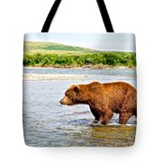 Grizzly Bear Determined To Catch A Salmon This Time In The Moraine River  Tote Bag