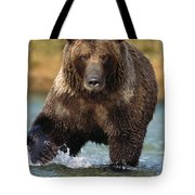 Grizzly Bear Female Looking For Fish Tote Bag