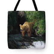 Grizzly Bear Fishing Brooks River Falls Tote Bag