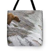 Grizzly Bear Fishing For Sockeye Salmon Tote Bag