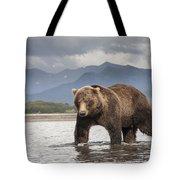 Grizzly Bear In River Katmai Np Alaska Tote Bag