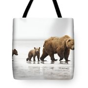 Grizzly Bear Mother And Cubs Lake Clark Tote Bag