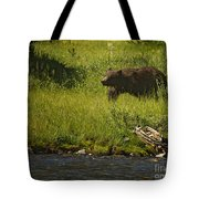 Grizzly Bear-signed-#1158 Tote Bag