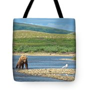 Grizzly Bear Stalking A Gull In The Moraine River In Katmai National Preserve-alaska Tote Bag