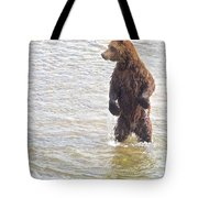 Grizzly Bear Standing To Get A Better Look In The Moraine River In Katmai Tote Bag
