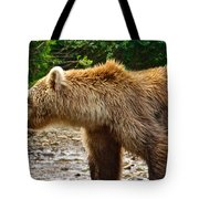 Grizzly Bear Very Close In Moraine River In Katmai National Preserve-ak Tote Bag