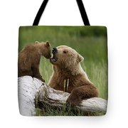 Grizzly Bear With Cub Playing Tote Bag