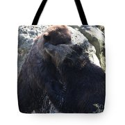 Grizzly Bears Fighting Tote Bag