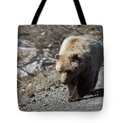 Grizzly By The Road Tote Bag