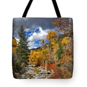 Grizzly Creek Cottonwoods Tote Bag