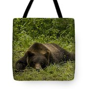 Grizzly Cub  #0863 Tote Bag