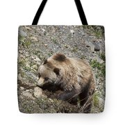 Grizzly Digging Tote Bag