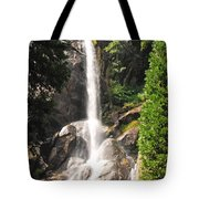 Grizzly Falls Tote Bag