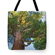Grizzly Giant Sequoia Top In Mariposa Grove In Yosemite National Park-california    Tote Bag
