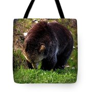 Grizzly Grazing Tote Bag