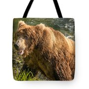 Grizzly On The River Bank Tote Bag