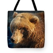 Grizzly Tote Bag