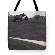 Grizzly Sow And 2nd Year Cub  #3241 Tote Bag