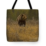 Grizzly Sow And Cub   #6365 Tote Bag