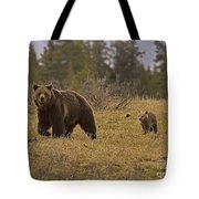 Grizzly Sow And Cub  #6382 Tote Bag