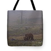 Grizzly Sow And Twins  #5817 Tote Bag