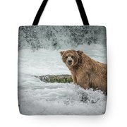 Grizzly Stare Tote Bag
