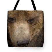 Grizzly Upclose Tote Bag