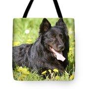 Groenendael Dog Tote Bag