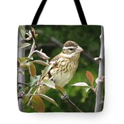 Grosbeak Tote Bag