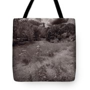 Gross Point Beach Grasses Bw Tote Bag